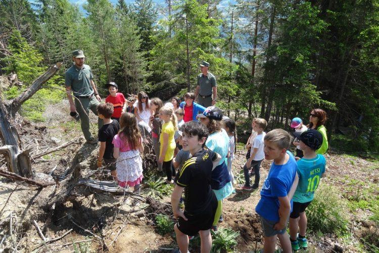 Baumfest der Grundschule Tils