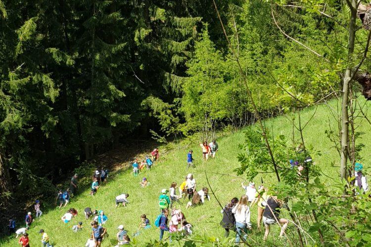 Baumfest in Lüsen